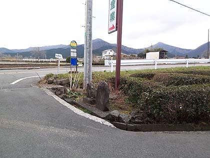津土井1.jpg